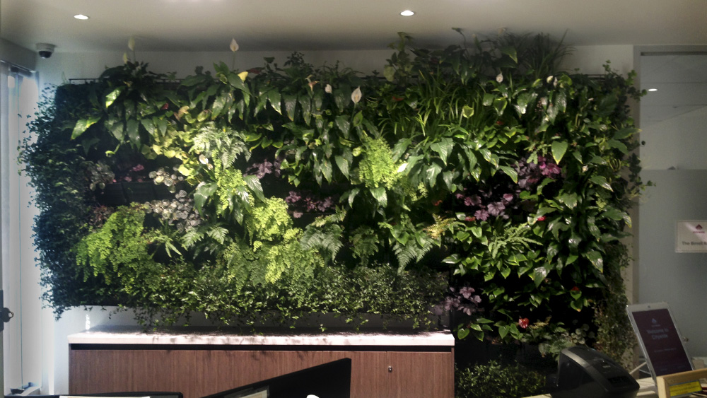 vertical_wall_gardens_melbourne.jpg