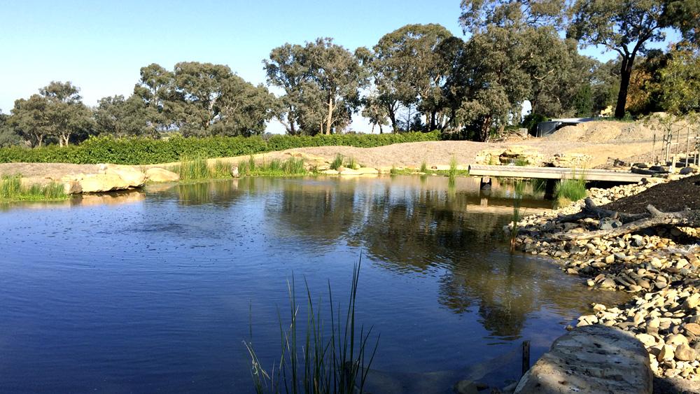 water_garden_melbourne.jpg