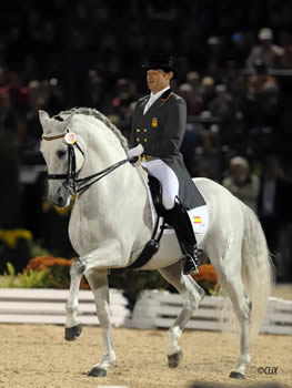 Stallions -