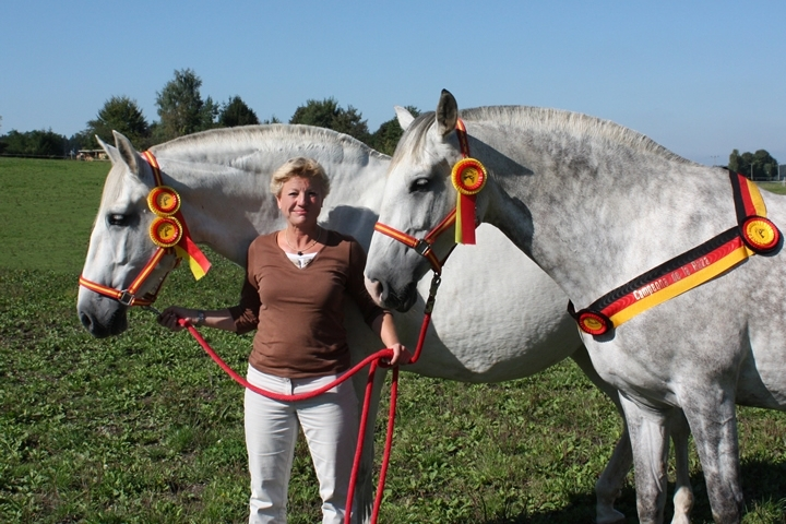 "German breeding show 2011 - Our mares are the best! Opera was awarded ""Campeona de la Raza"", and Pierra is ""Vice-Campeona de la Raza"""