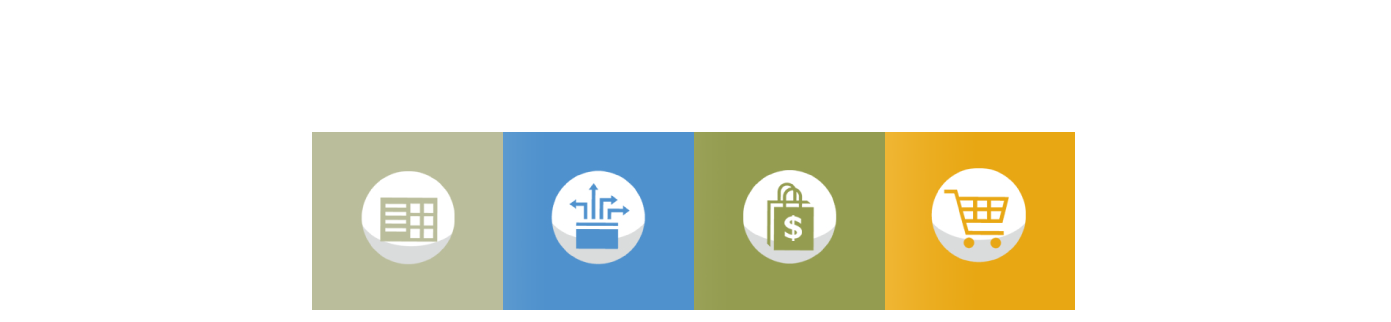 Icons for presentation - Winshuttle