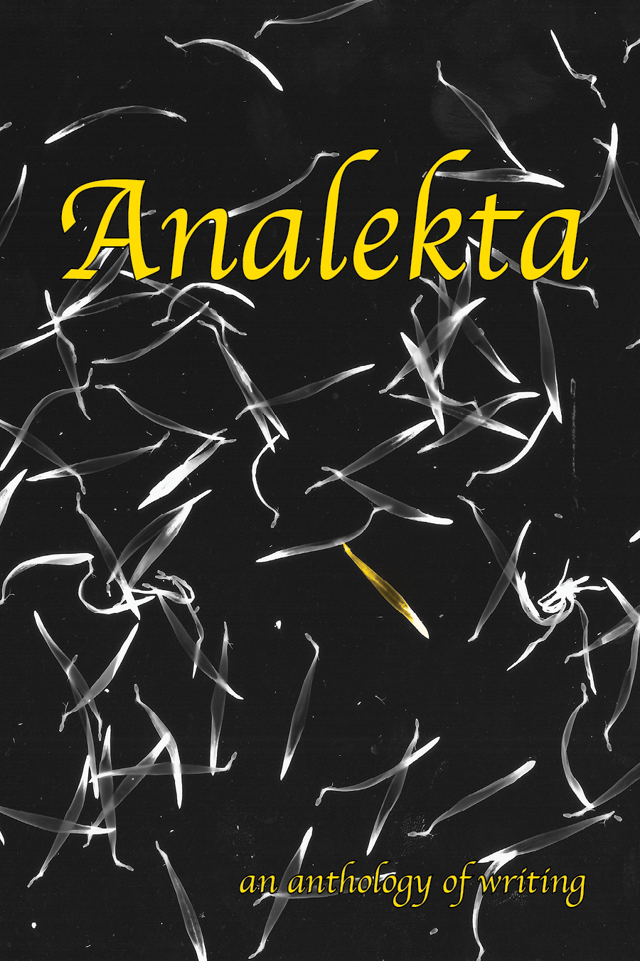 Analekta Volume 1