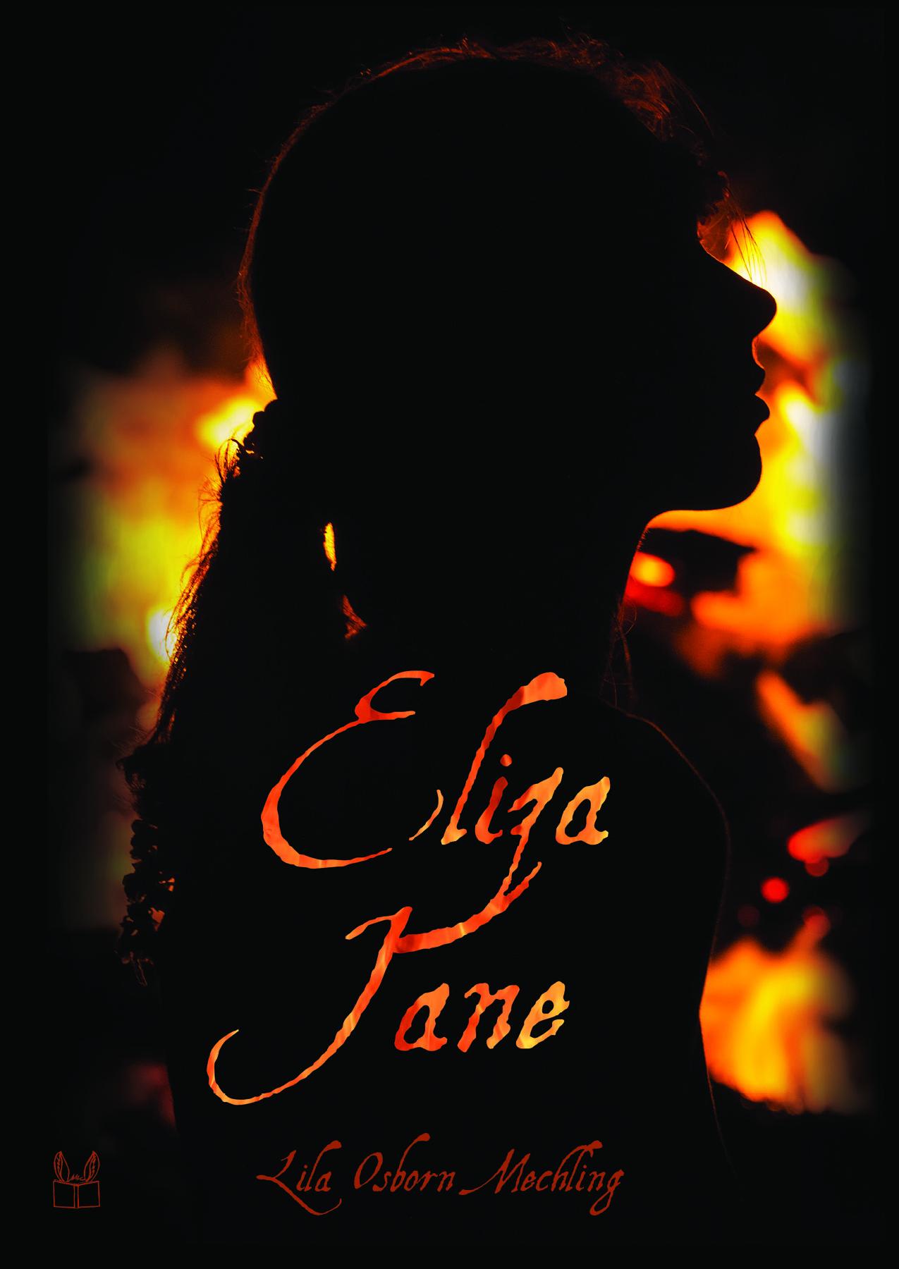 Postcard for Eliza Jane by Lila Osborn Mechling (Donkey Ears Publishing, December 2018)