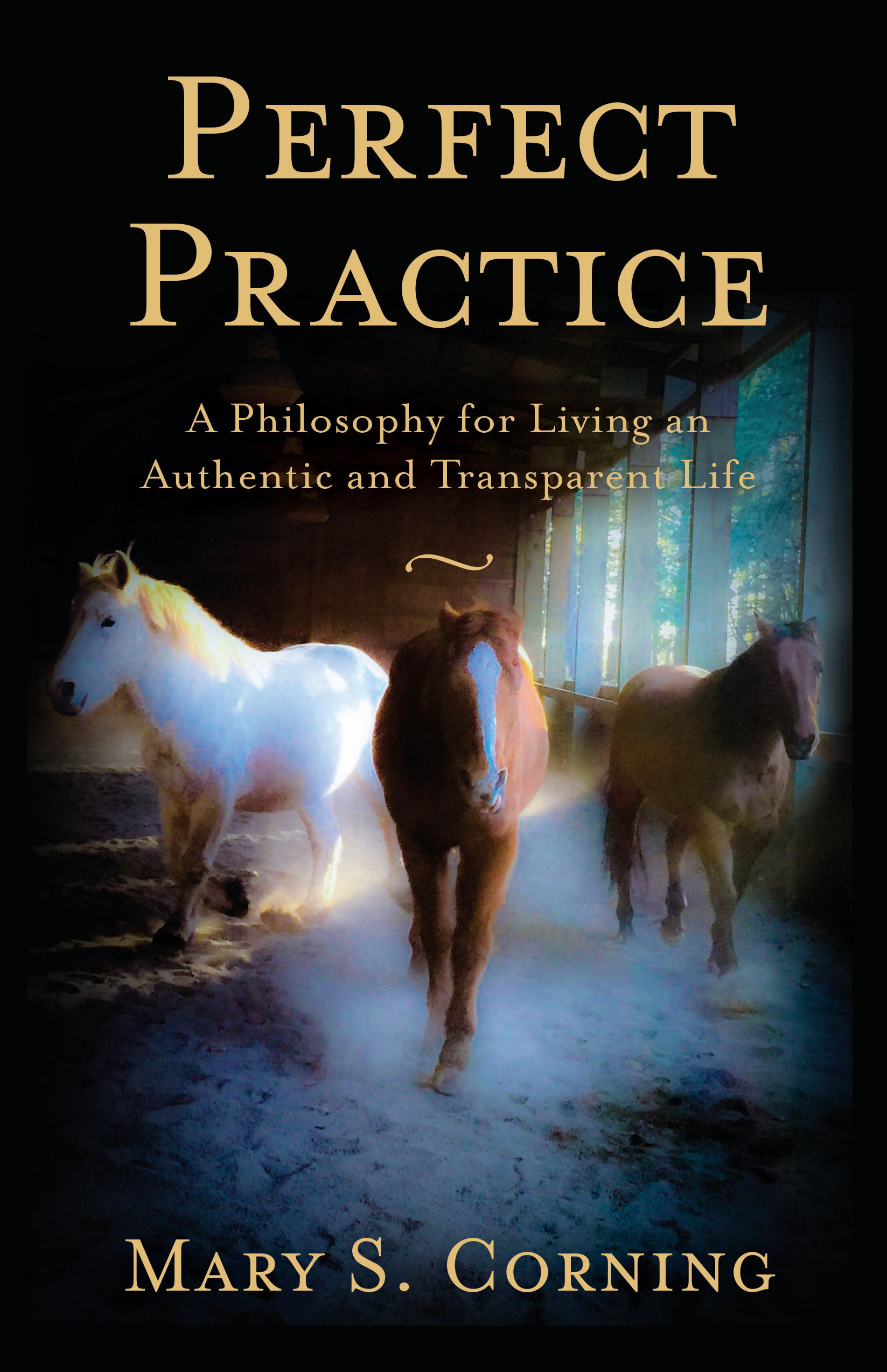 Perfect Practice by Mary Corning (Circle Around Publishing, March 2019)