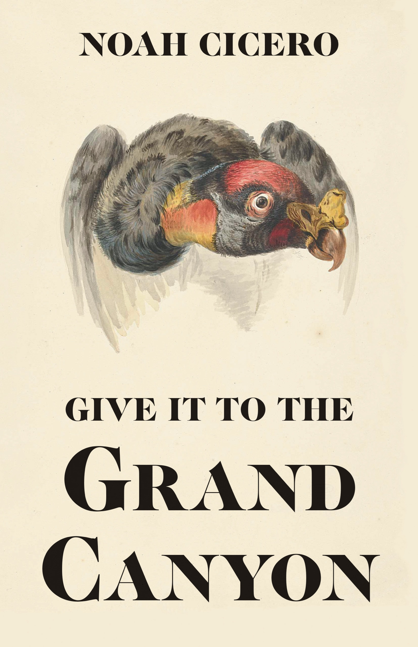 Give It to the Grand Canyon by Noah Cicero (Summer 2019, Philosophical Idiot)