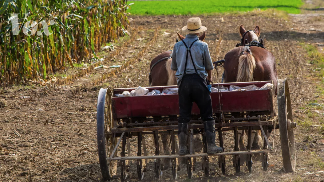 How an Amish missionary caused 2014's massive measles outbreak -