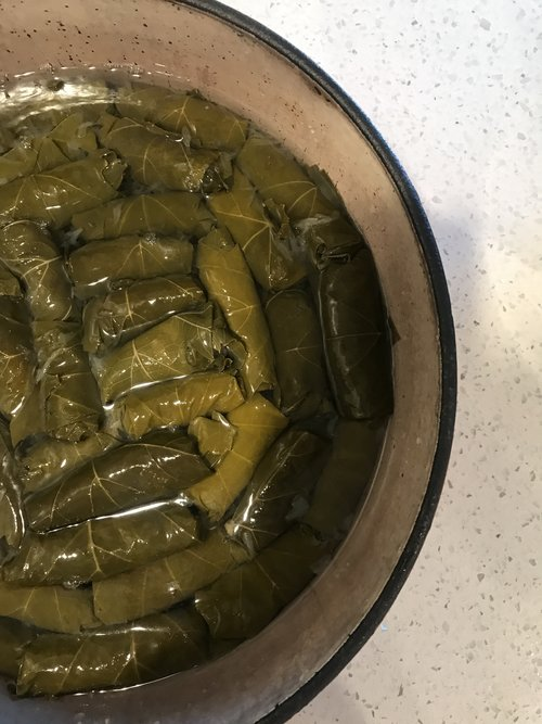 Lamb Stuffed Grape Leaves - With the autumn leaves falling from our trees (sorta, we live in SD), enjoy this stuffed grape leaves recipe from Dan Parker.
