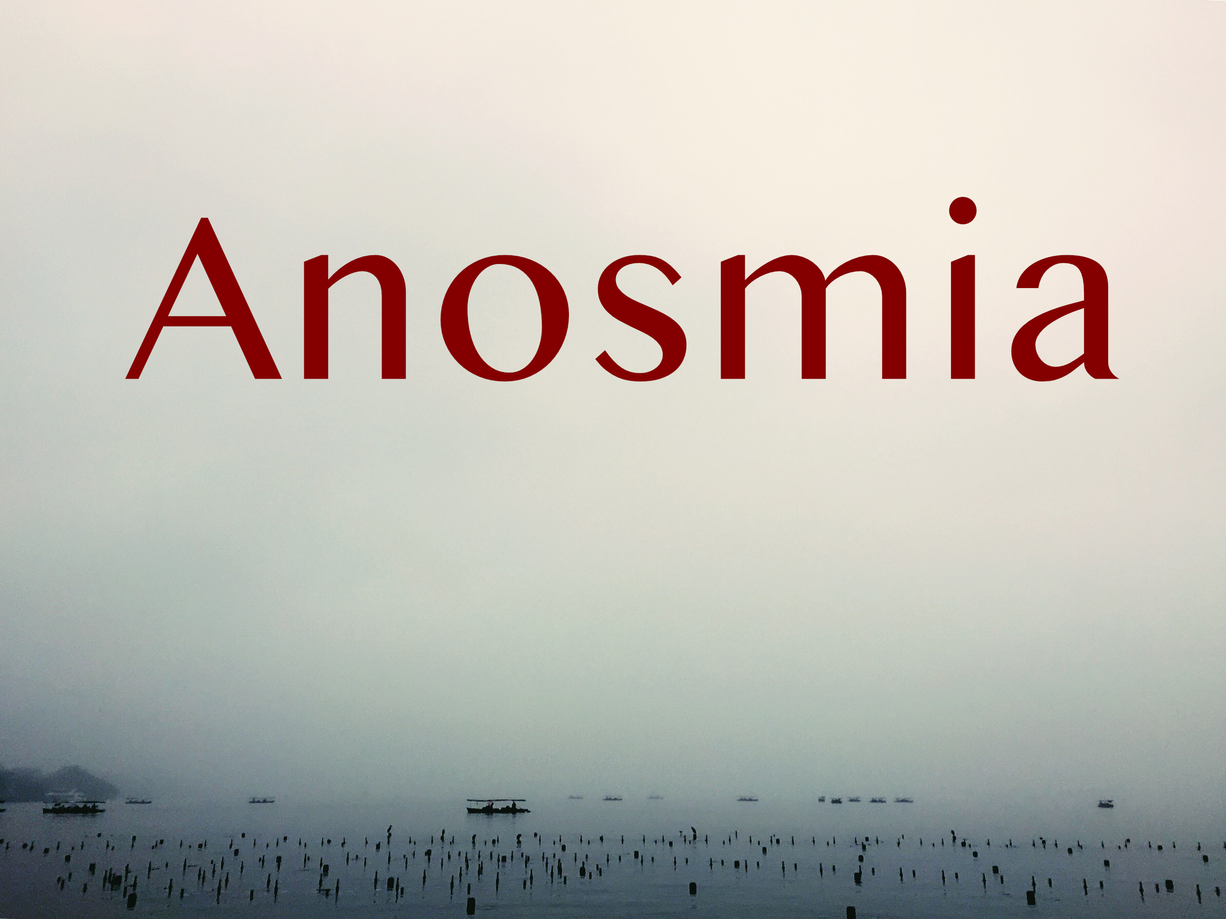 stanley-sivan-238676-unsplash_anosmia.jpg