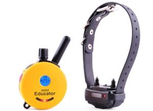 dog training E-collar and remote control