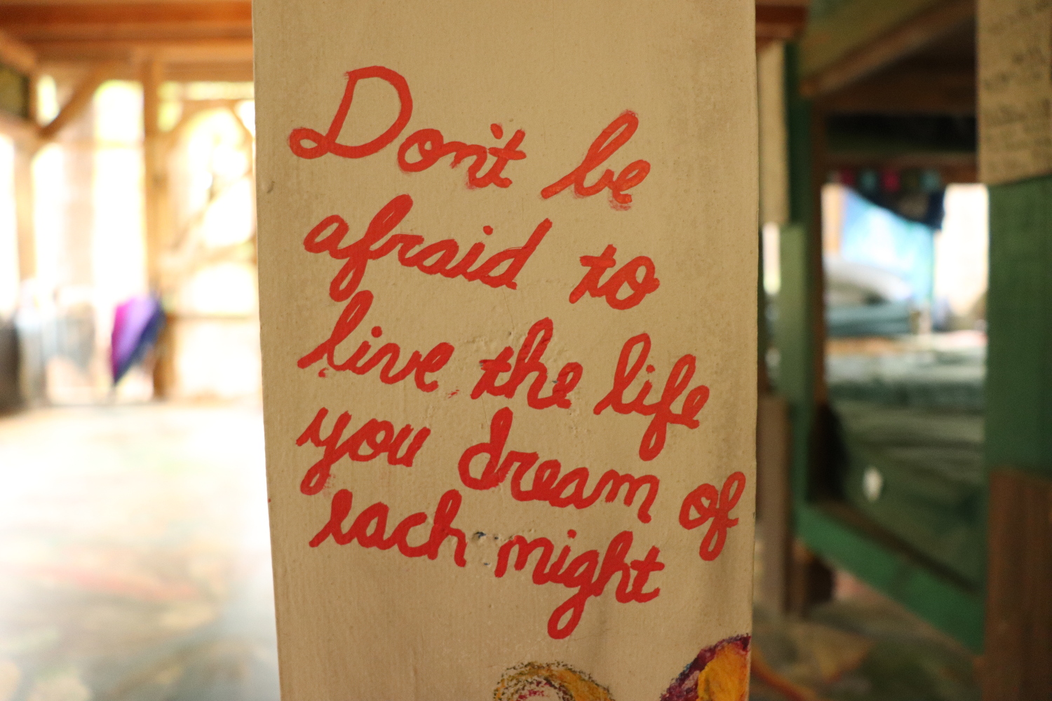 Live your dreams each night!