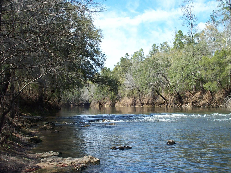 Florida Photo.jpg