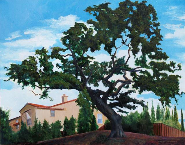 California Oak – Hawk Court