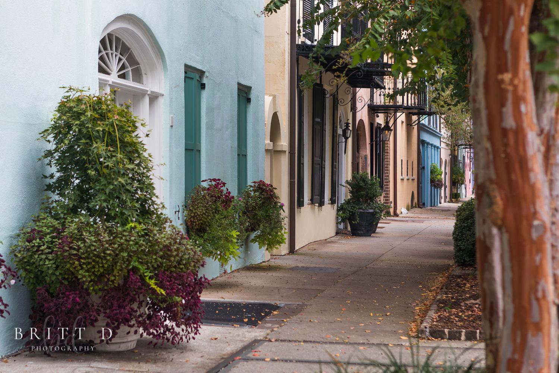 Charleston Photographer-3.jpg