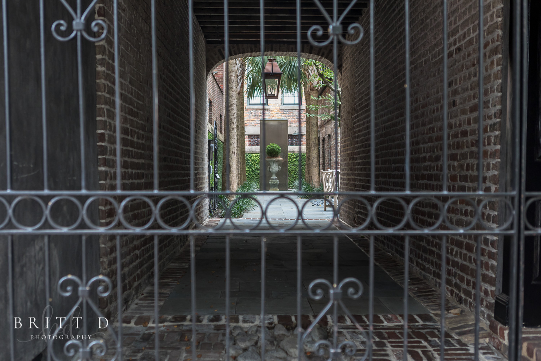 Charleston Photographer-6.jpg