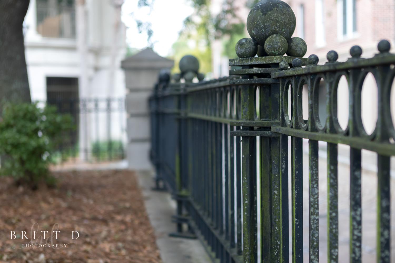 Charleston photographer-11.jpg