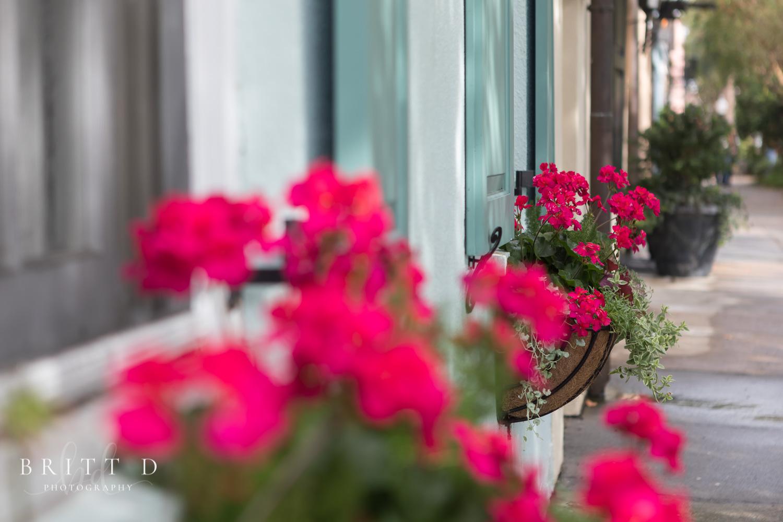 Charleston photographer-18.jpg