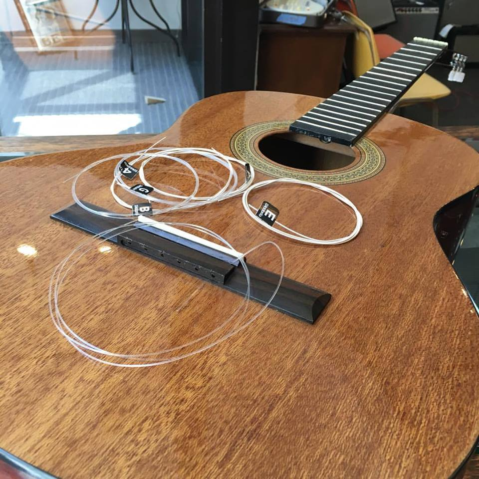 Herzog Music Guitar Setup.jpg