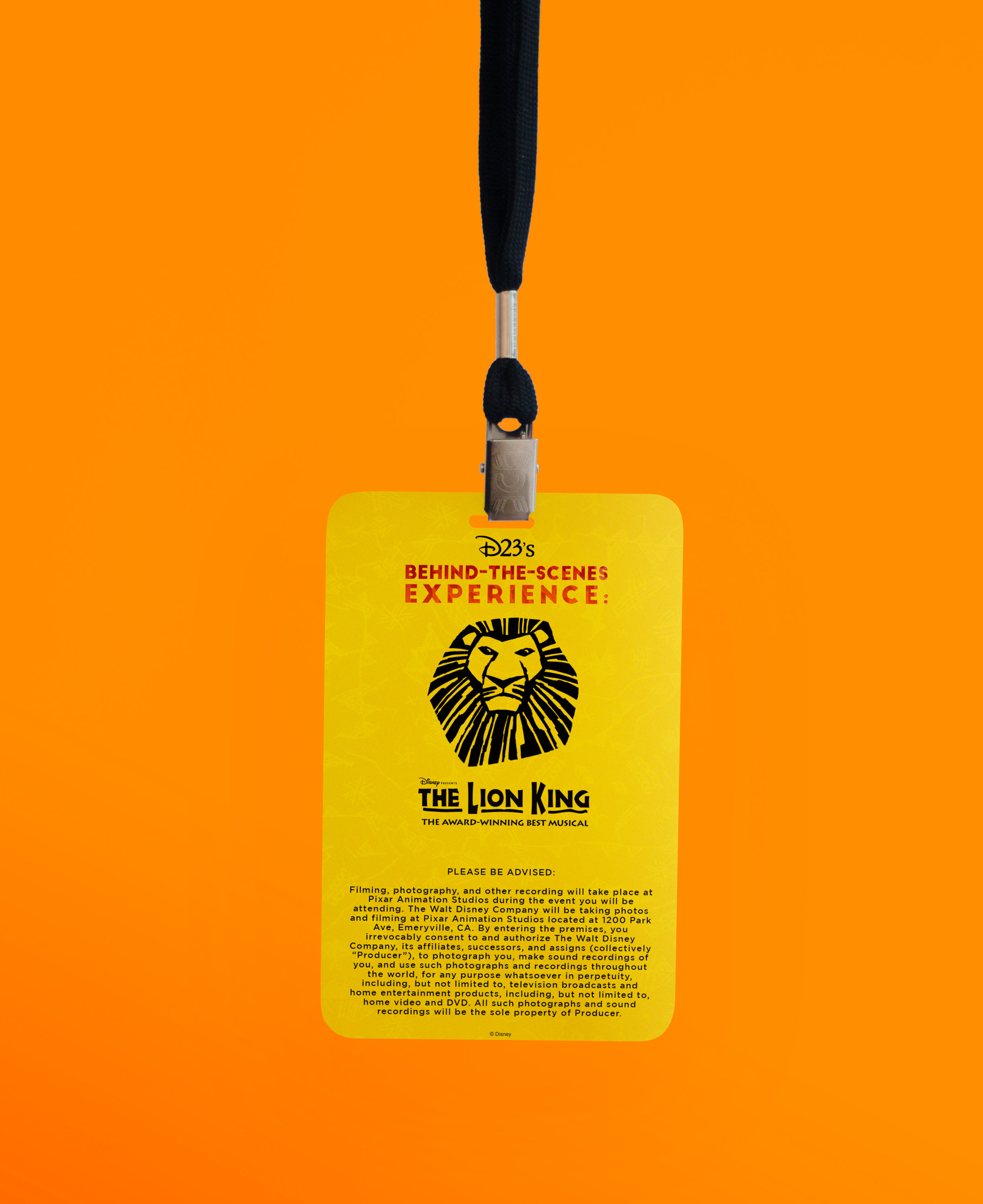 lion king badge back.jpg