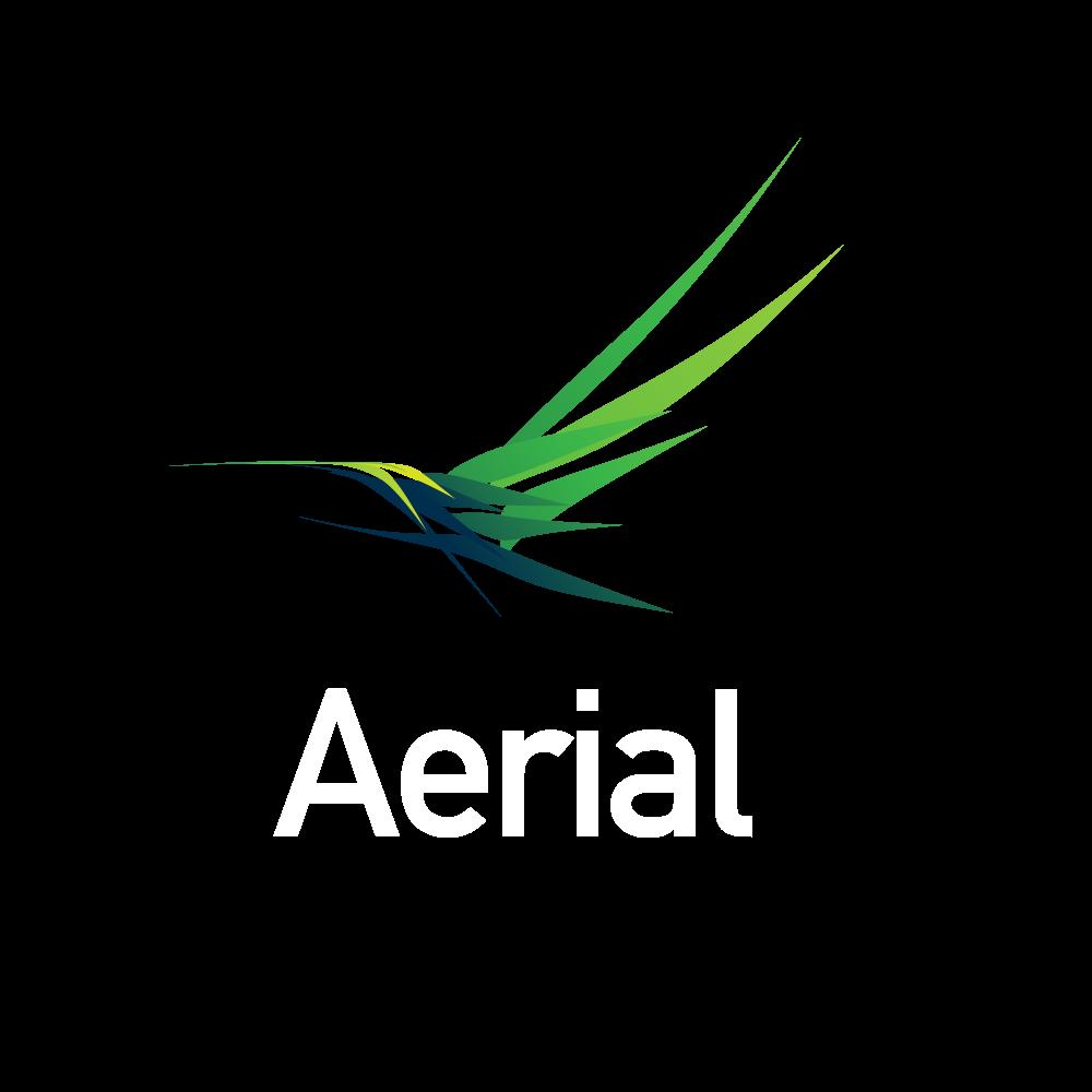 Aeriel.png