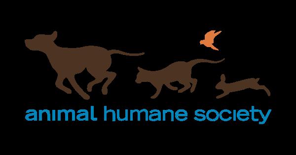logo-600x316.png