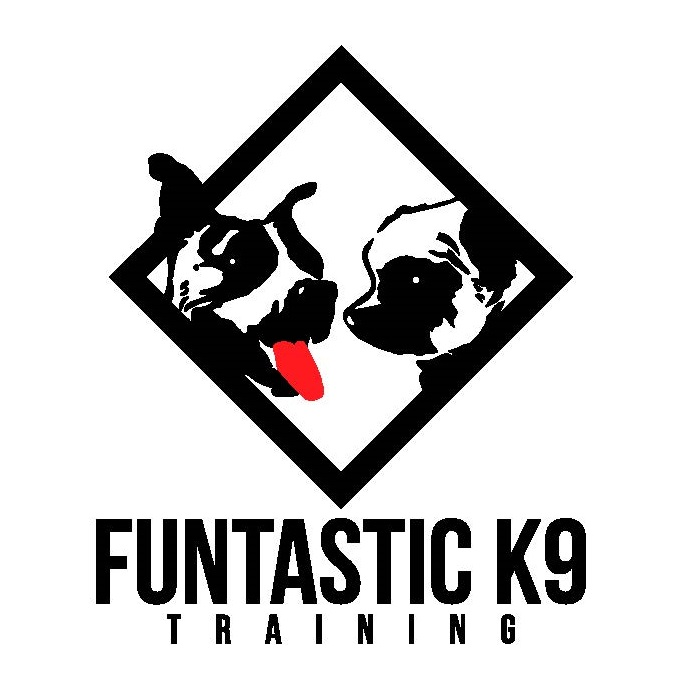 funtastic-k9-vector-logo.jpg