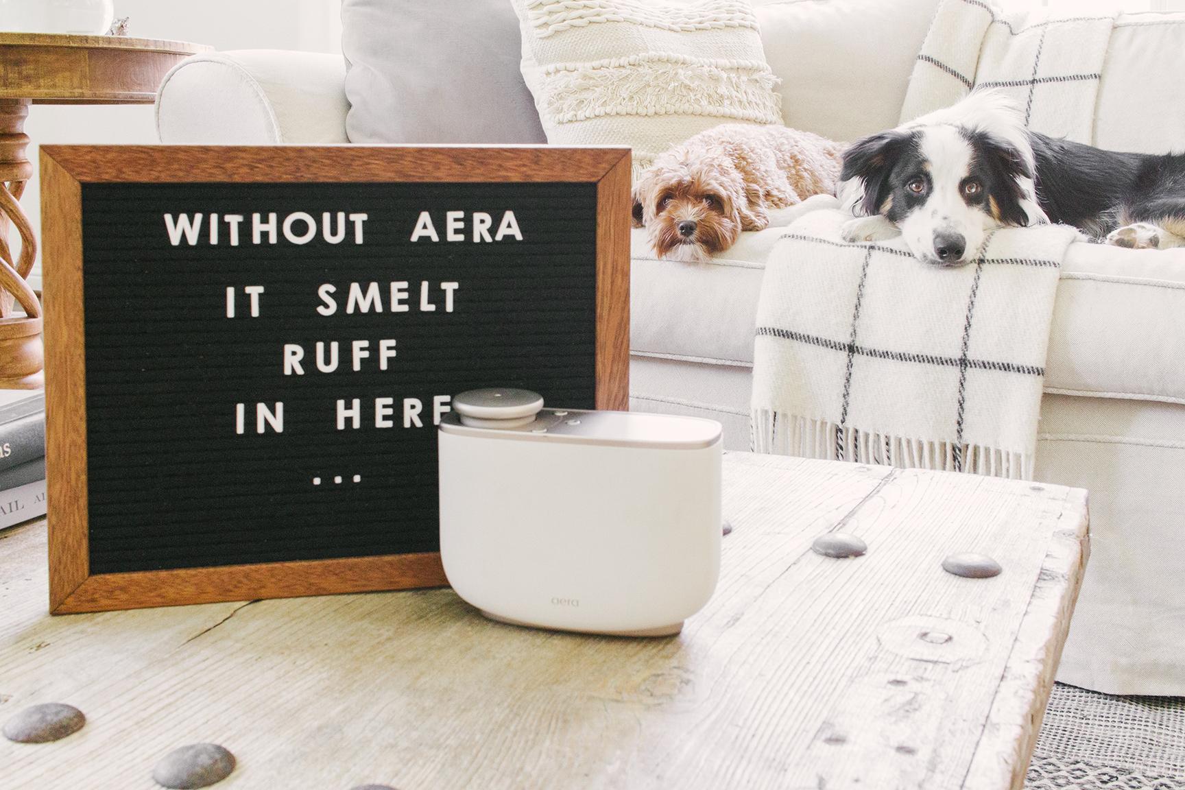 AERA FOR HOME 2-9956.jpg