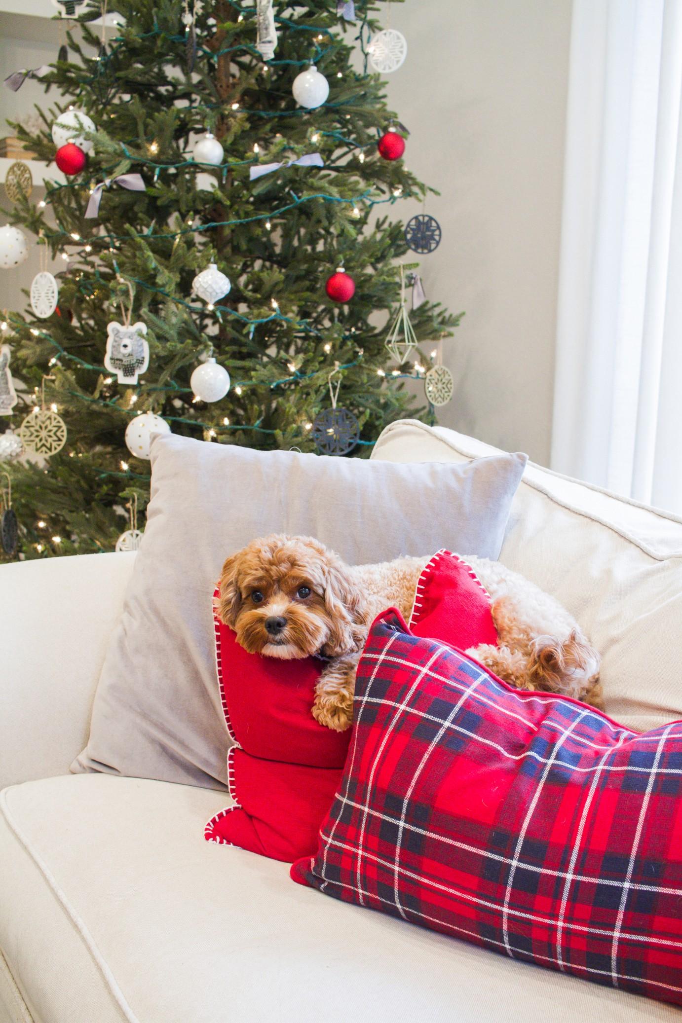 Tasteful Hallmark Christmas-0504.jpg