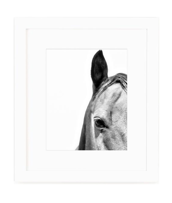 Horse Eye Print - → SHOP IT NOW