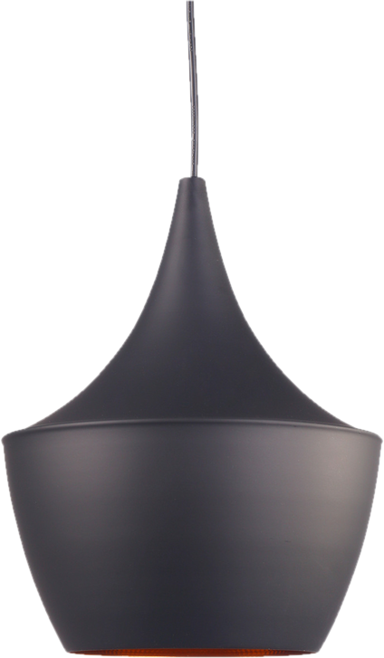Modern Pendant Light.png