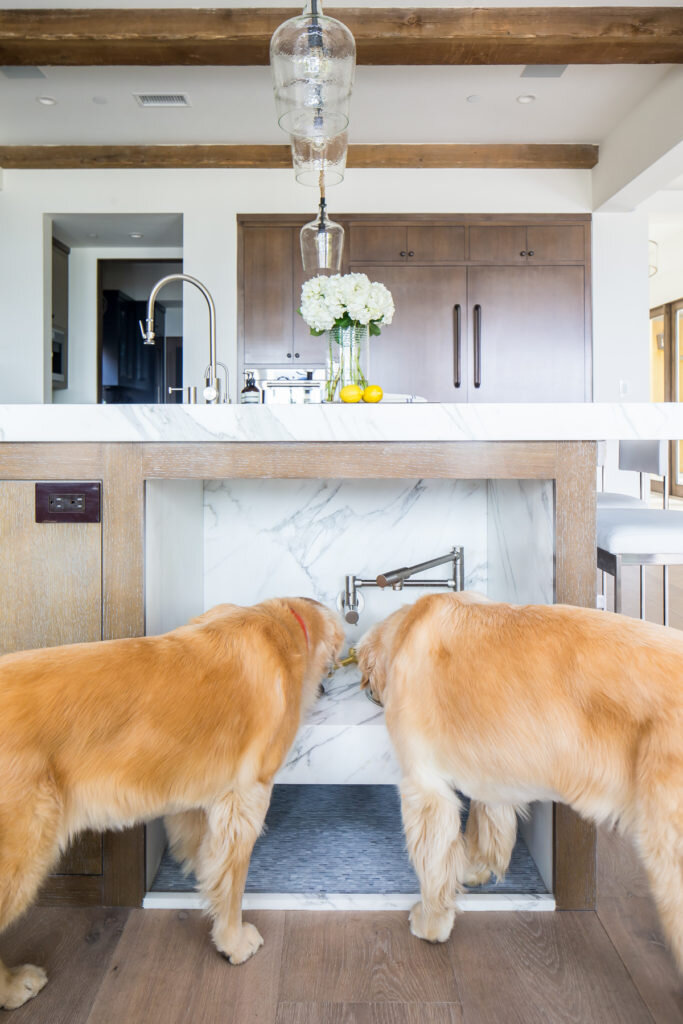 Dogs and Design - Feeding Station.jpg