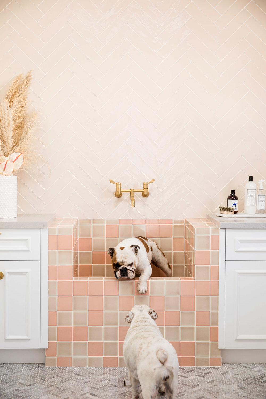 Dogs and Decor - Dog Wash.jpg