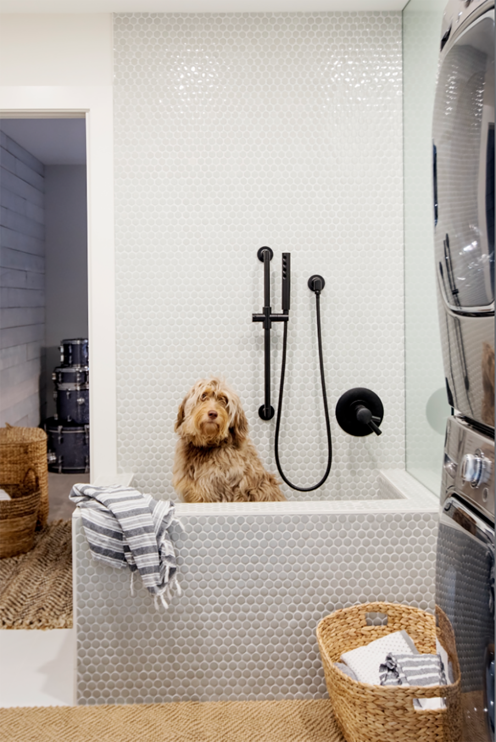 Dogs and Decor - Dog Wash.png