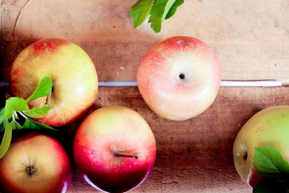 fettle-blog-nutrition-apples.jpg