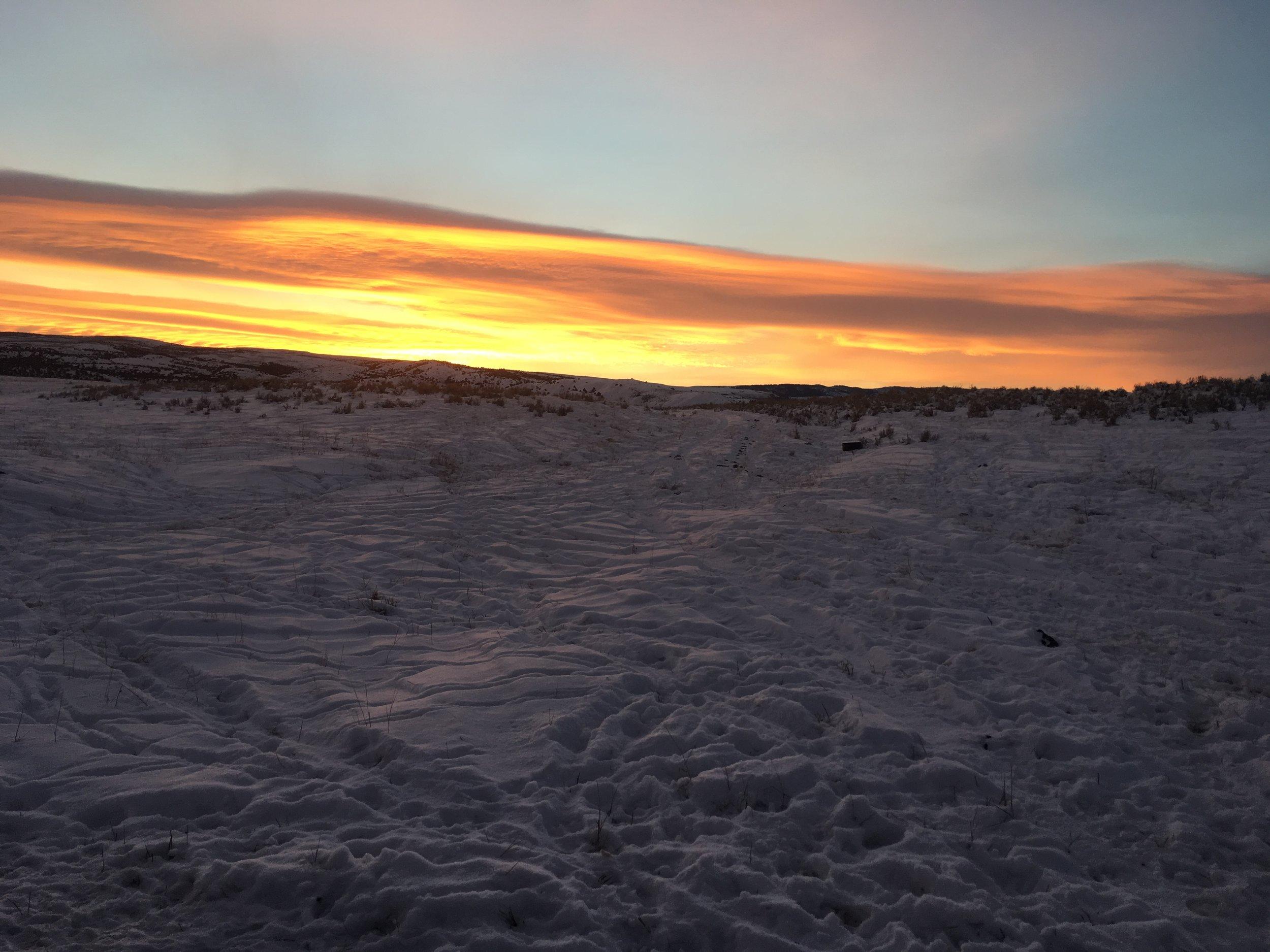 Sunrise while feeding. 1/3/18