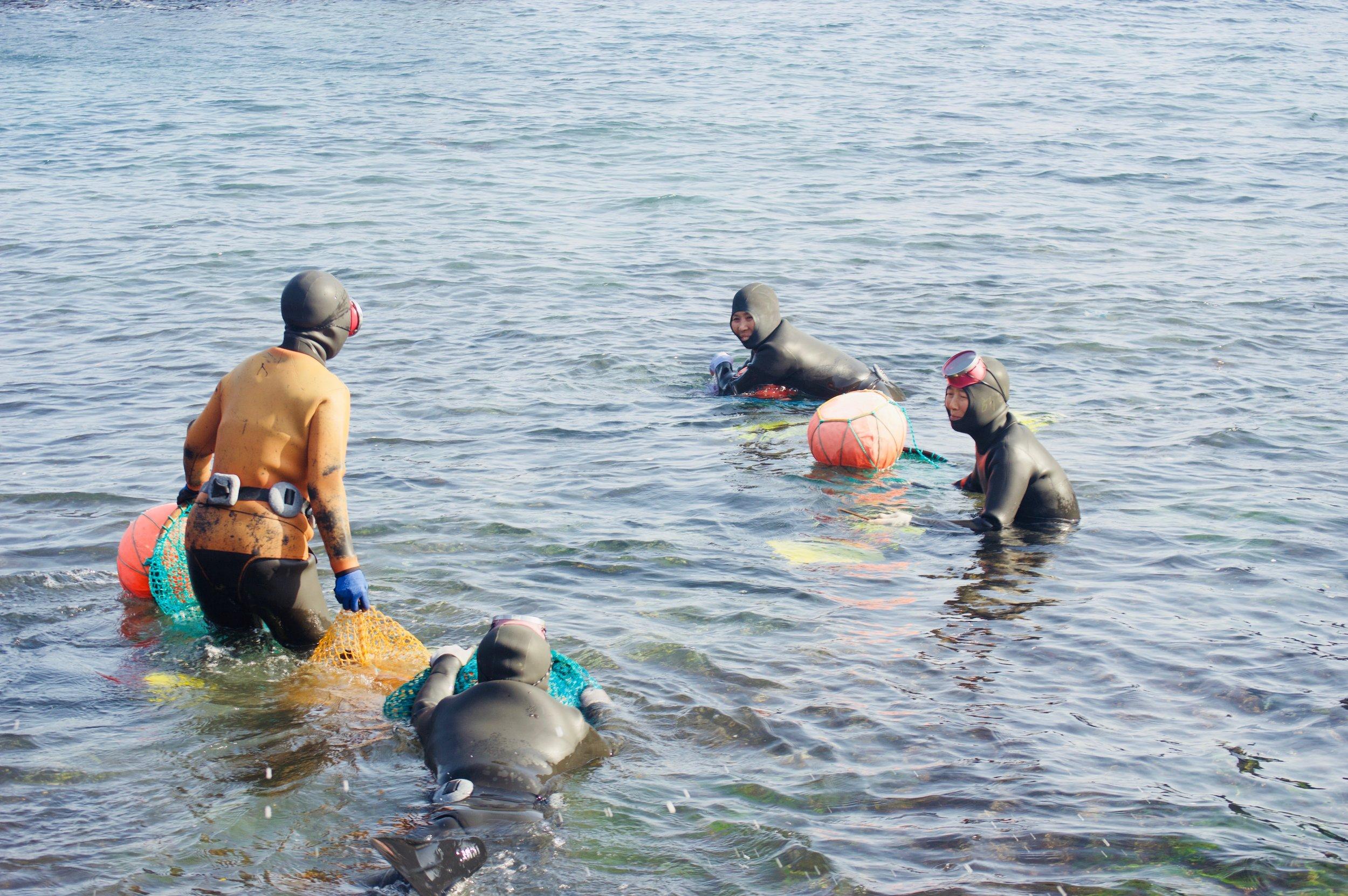 haenyeo divers