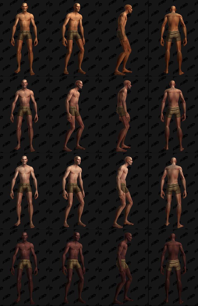 KT Human 3.jpg