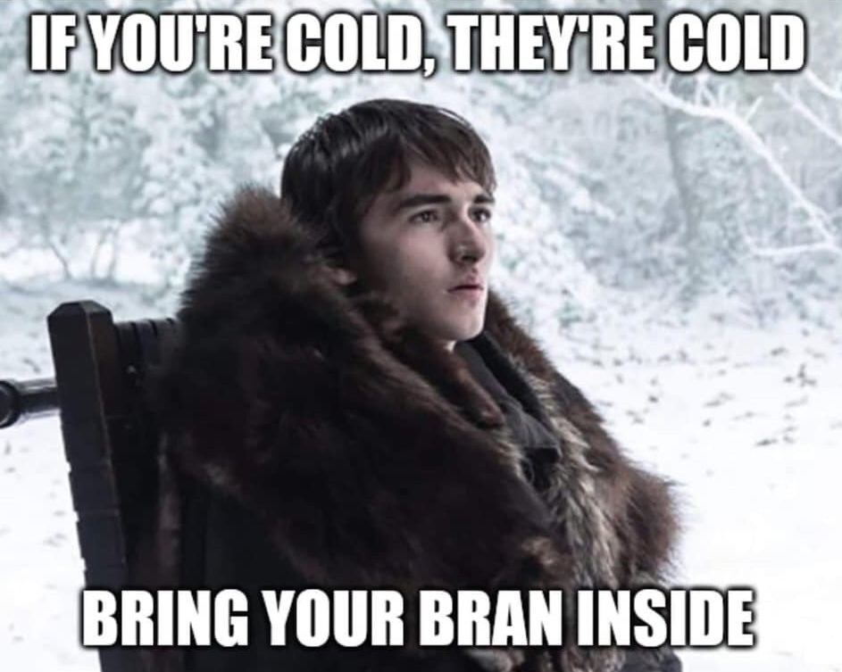 Bran Stark Cold.png