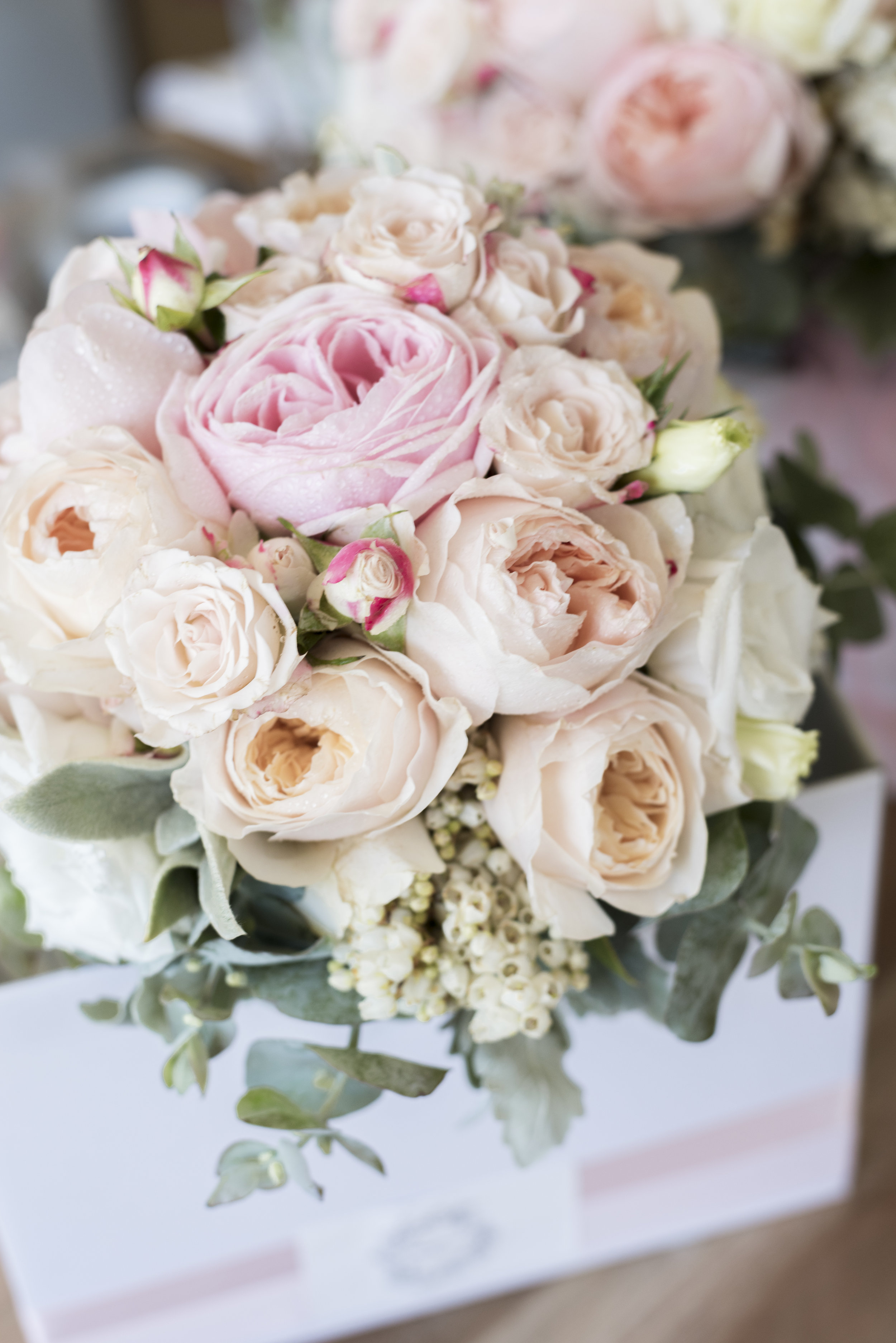Teagan_Mayflower Weddings Photography_002.jpg
