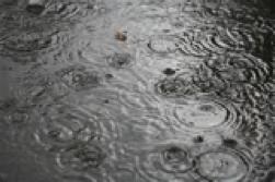 regnvejr.png