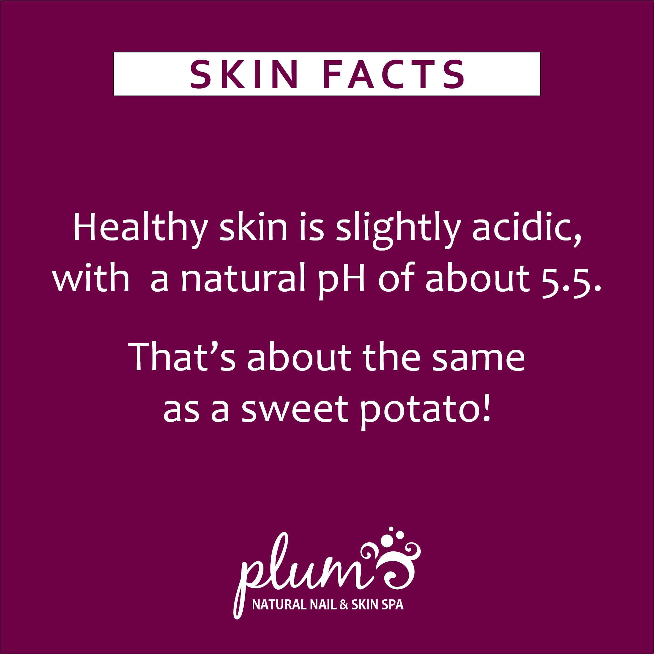 skin fact 1.png