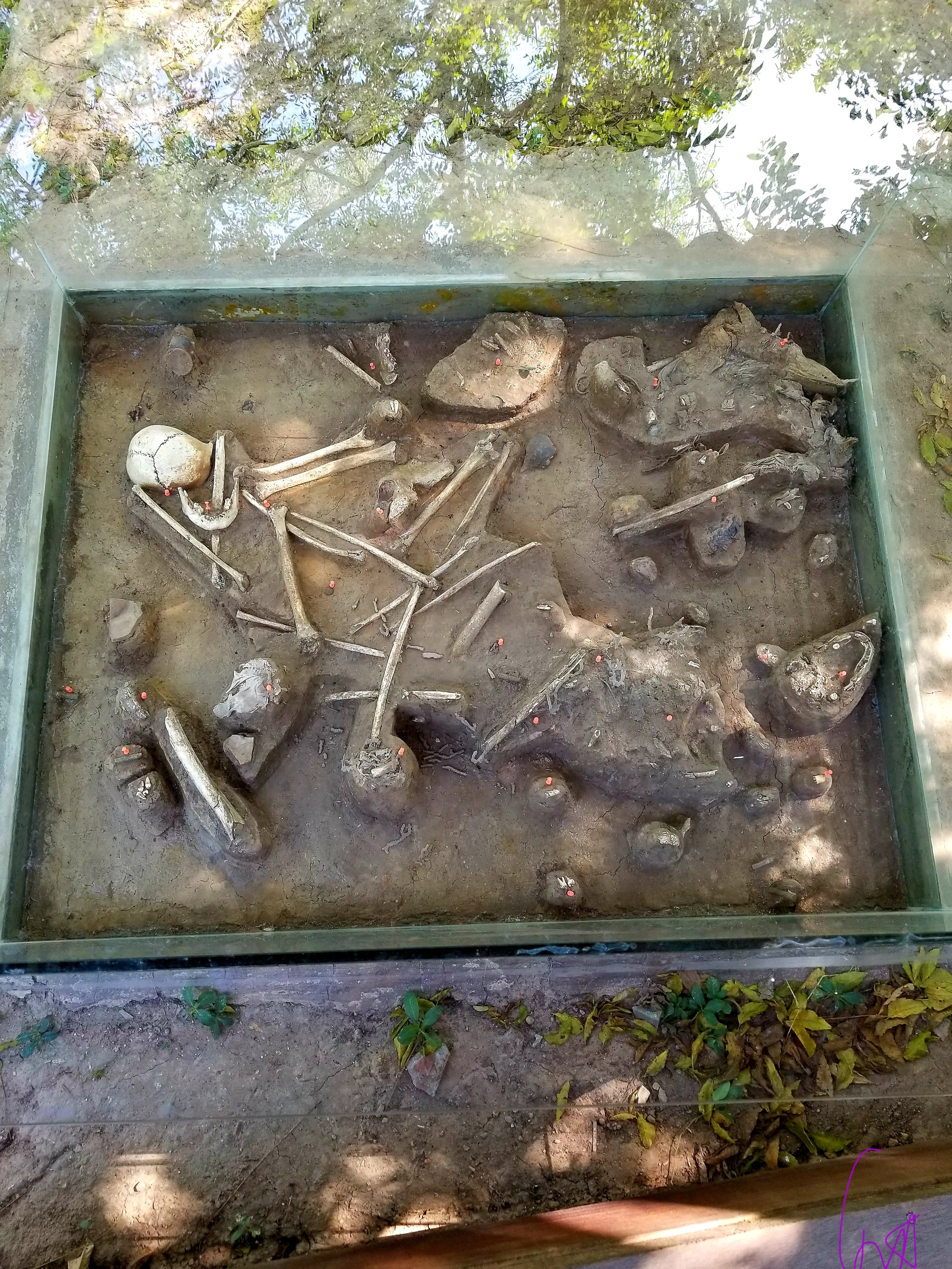 Remains at The Killing Fields