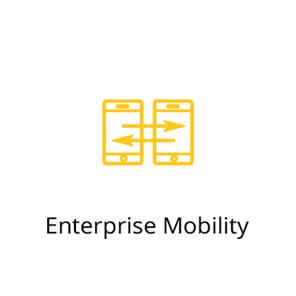 icon-EnterpriseMobility.png