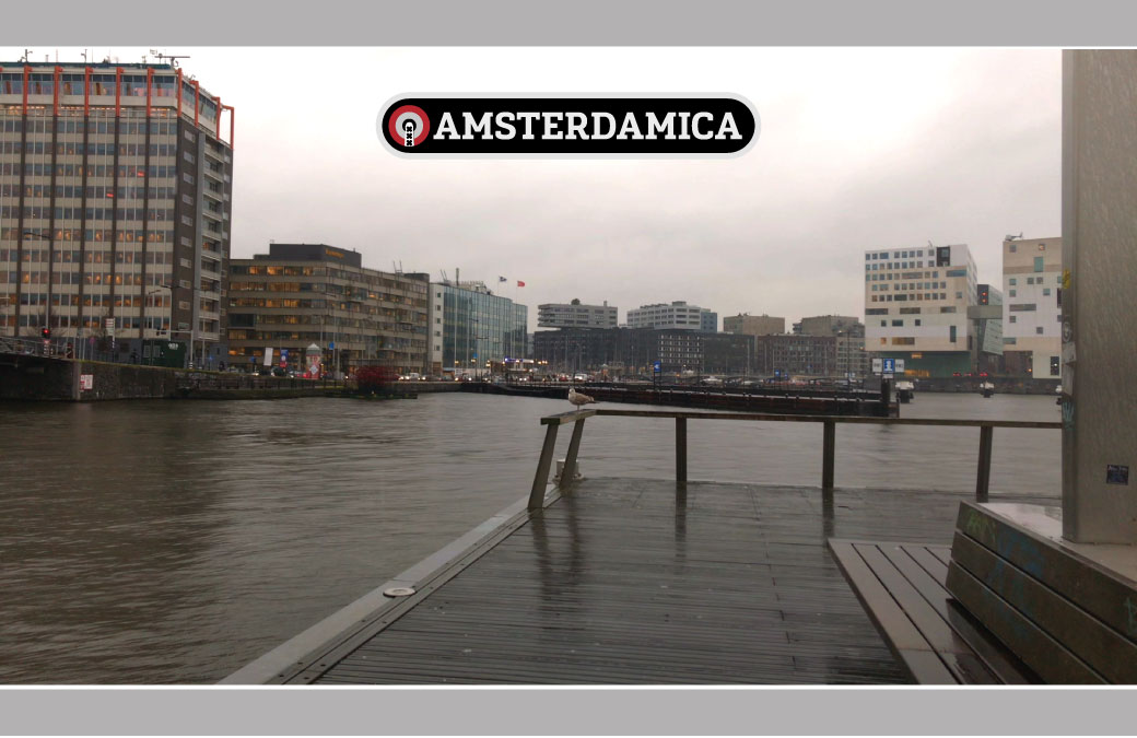 Amsterdamica S01E29: Our Friends The Gulls