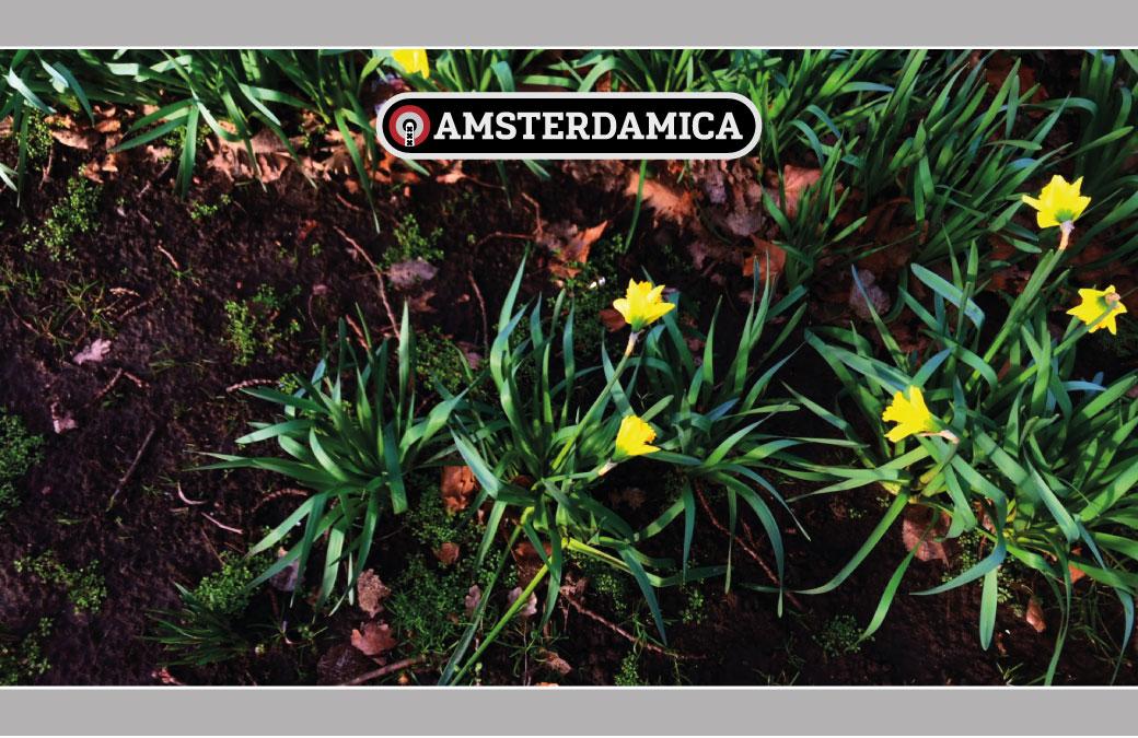 Amsterdamica S01E52: Flower Power