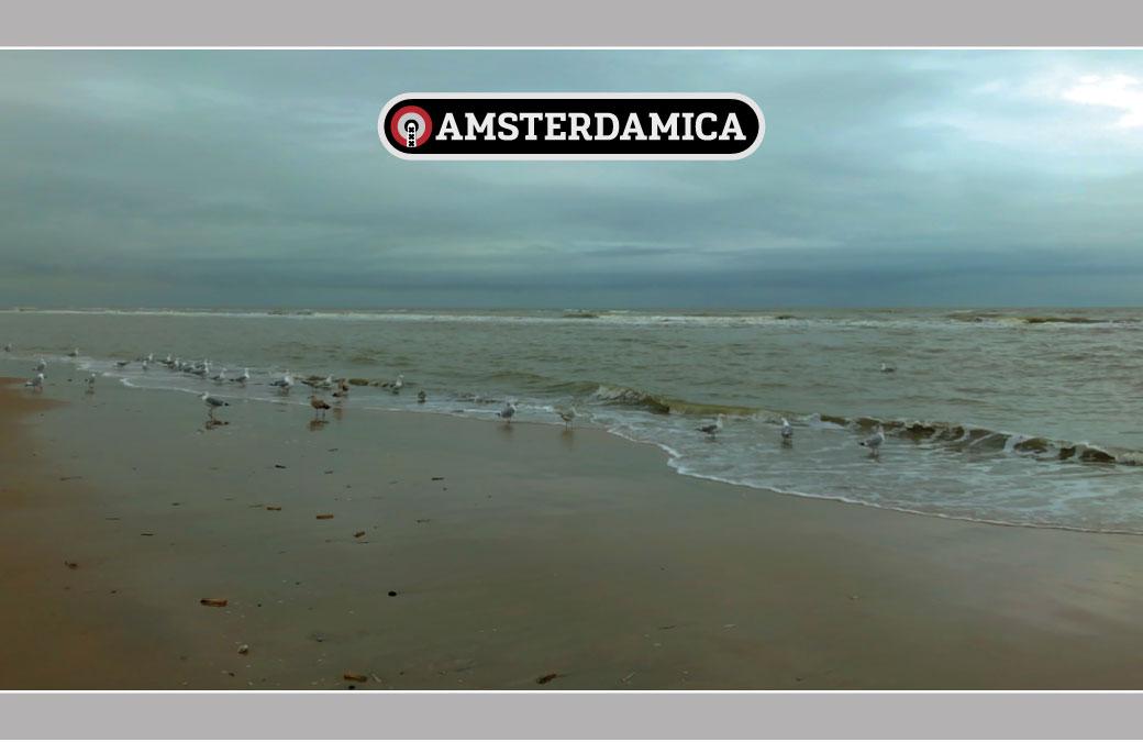 Amsterdamica S01E57: Amsterdam Beach