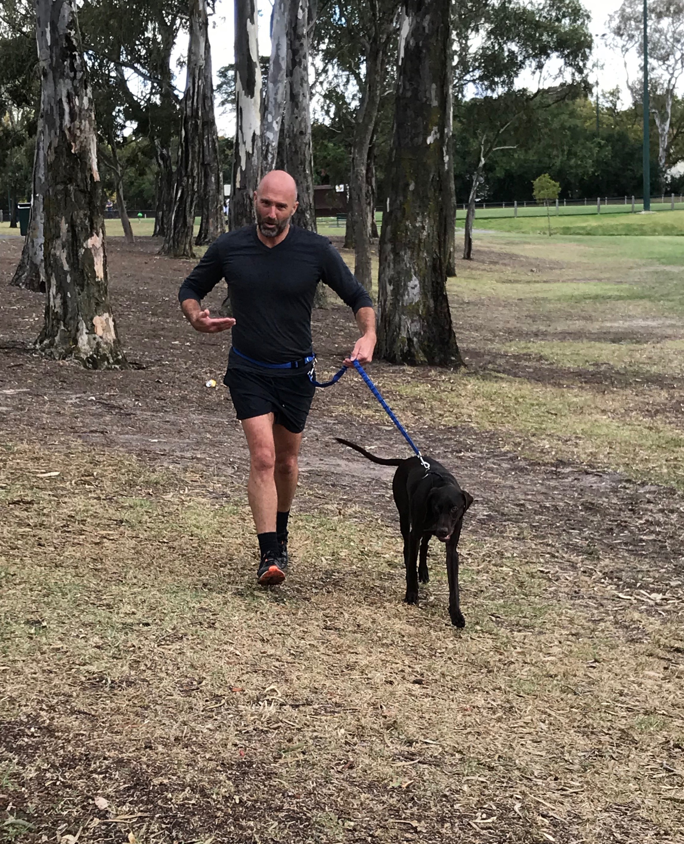 Over three weekends, I took Hunter from pulling intolerably on the lead to running along with Hunter's owner.