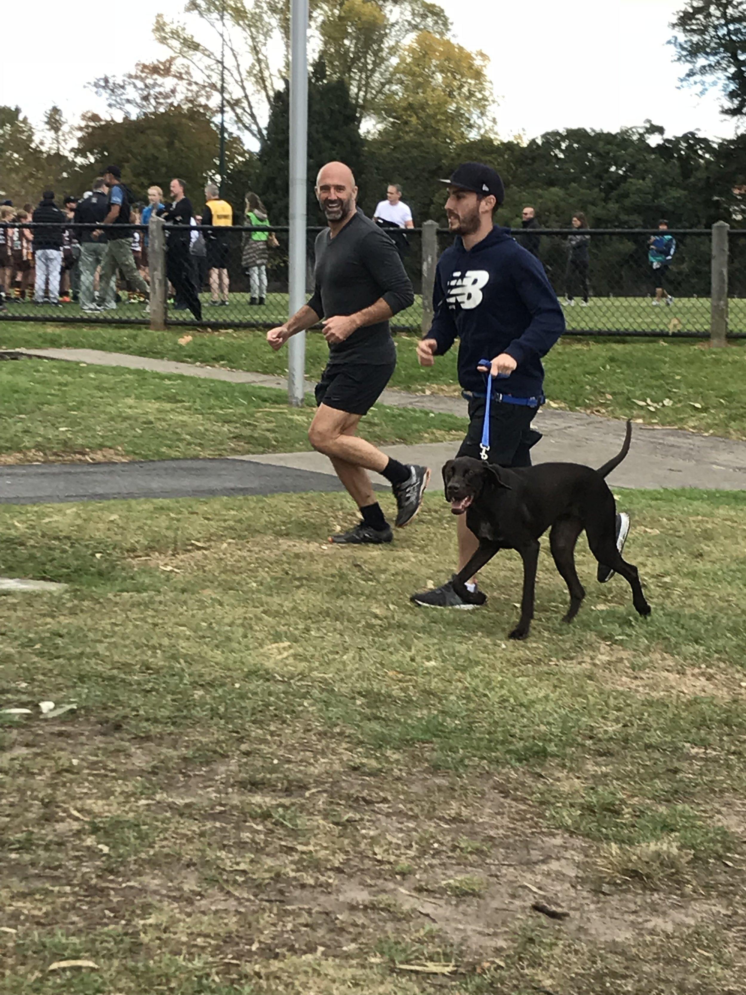 DOG - Archer - running on lead 685.jpeg
