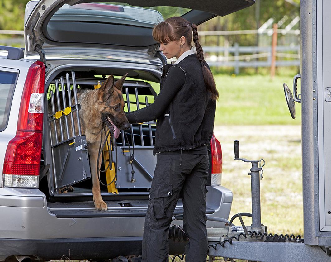 Dogtrainer_summer_horsetrailer_dog_00364_10X7cm_print.jpg