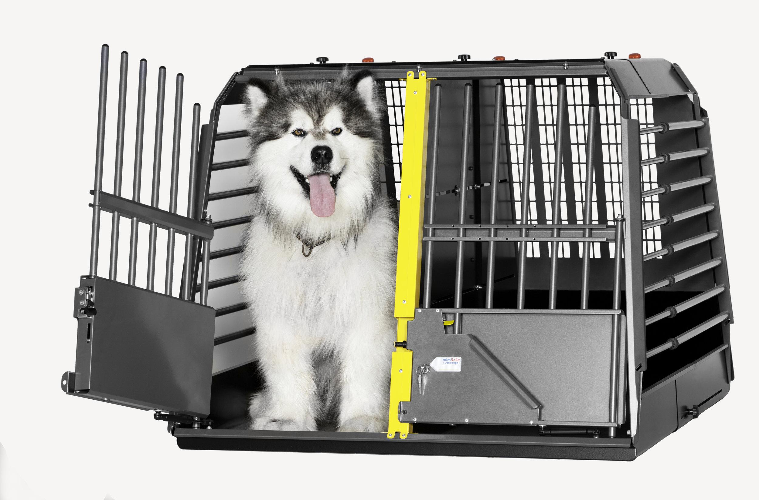 3G_variocage_maxiumum_dog in cage_dog_470x310mm_print.jpg