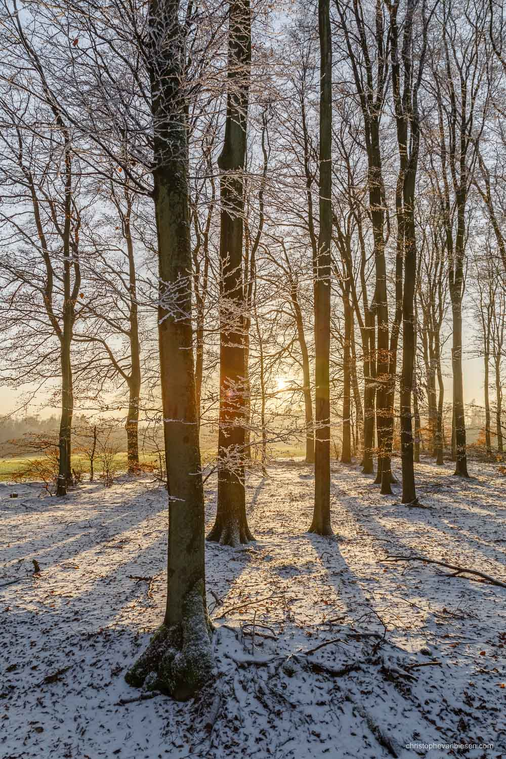 Snow in Luxembourg - Winter sunset in a forest somewhere in the Grand-Duchy of Snow in Luxembourg - Winter Sparkle